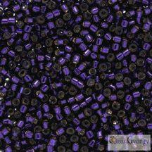 0609 - Silver Lined Dark Purple - 5 g - 11/0 delica