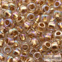 Gold Lined Rainbow Crystal - 10 g - 6/0 Toho japán kásagyöngy (994)